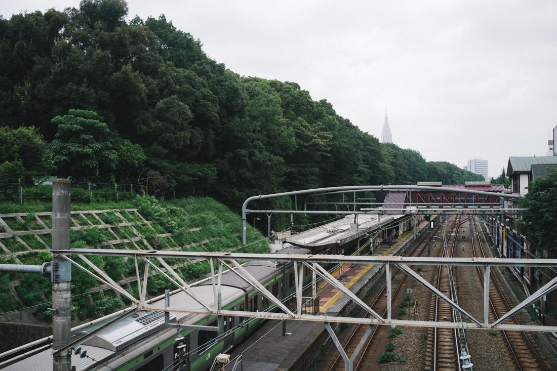 View from Harajuku train station heading Yoyogi park/Meiji shrine.