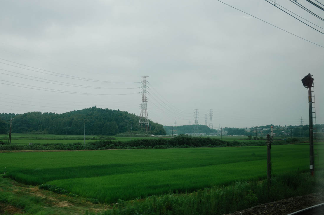 Endless rice fields and high tension wires live side-by-side