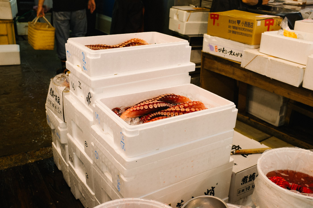 Octopus legs already boxed and ready to be shipped.