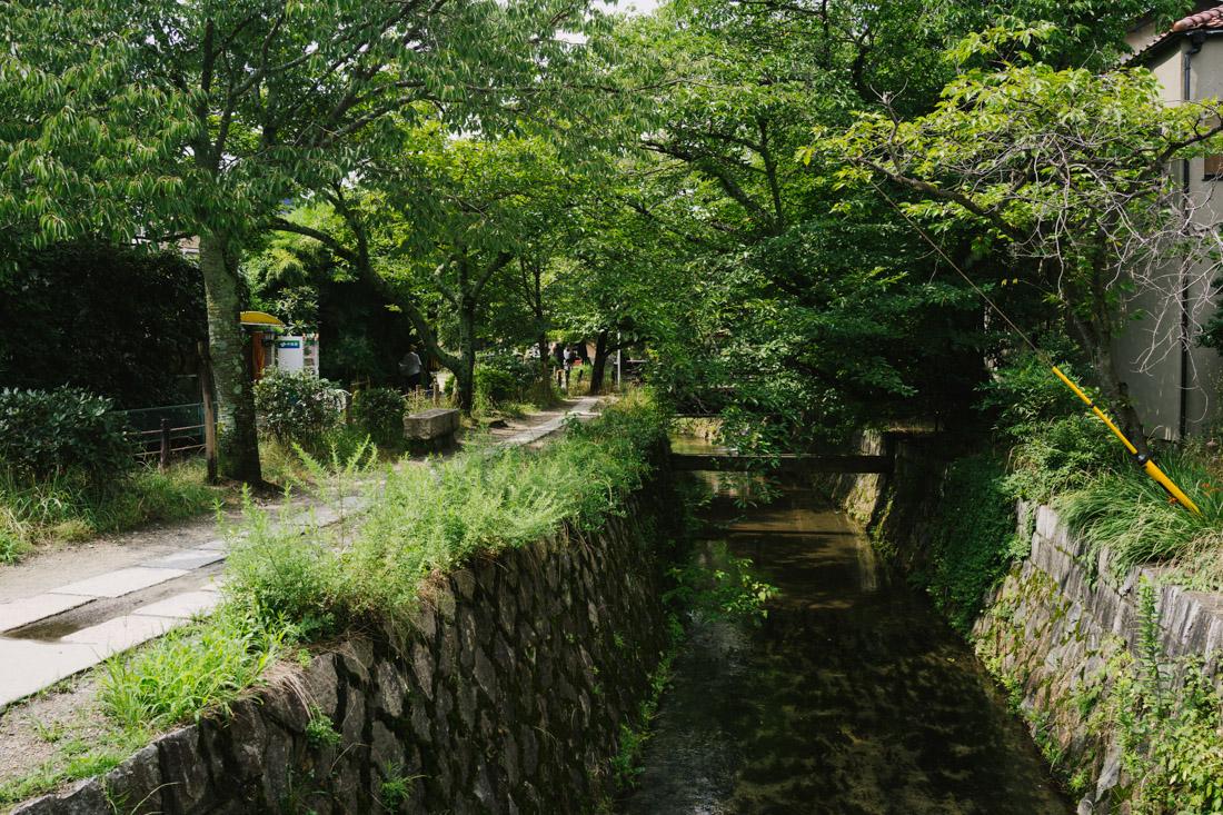 Philosopher's Walk near Ginkaku-ji, where we had lunch.
