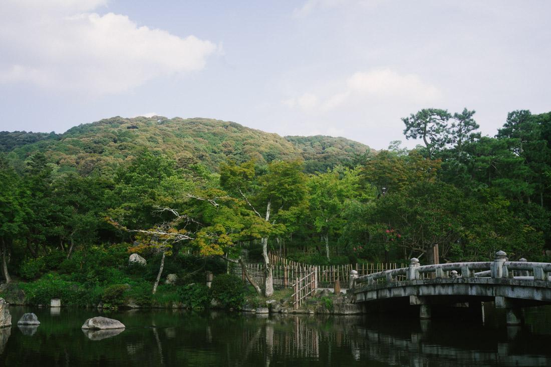 We passed by Maruyama Park again, on our way to Kiyomizu-dera.