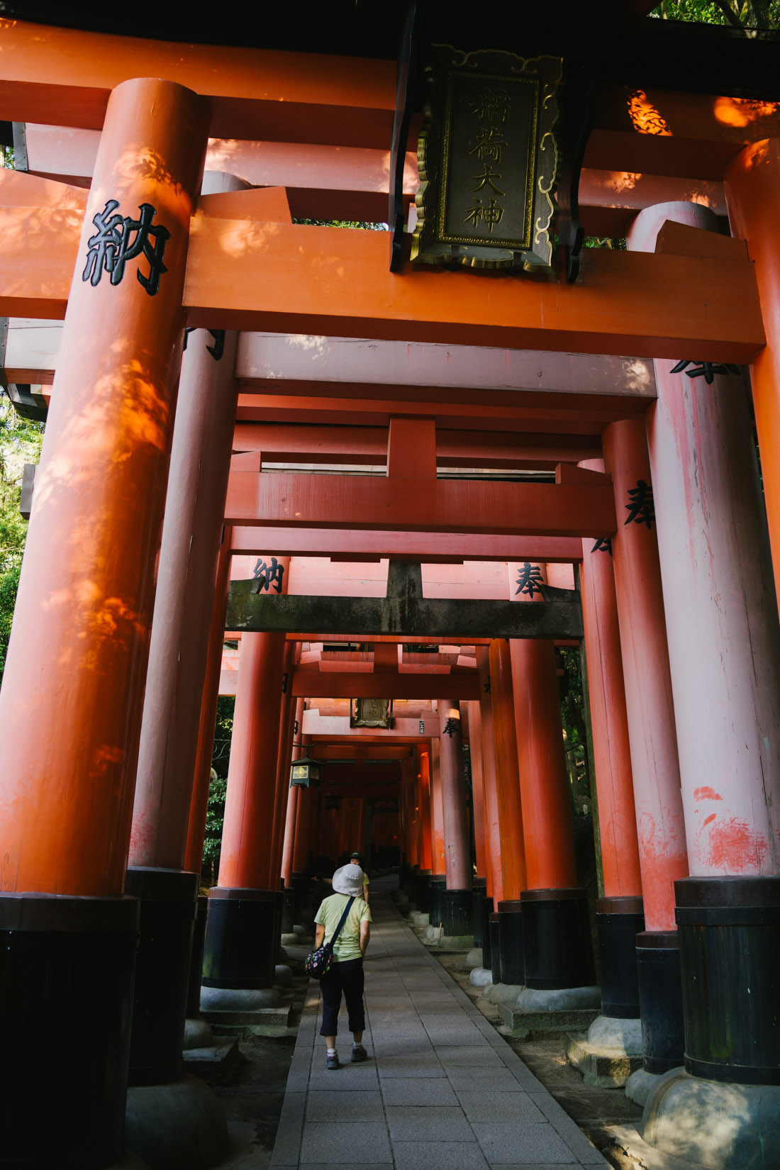 There are some very very ancient torii along the path, and few very recent ones.